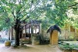 Travellers' Choice Award for Popham Arboretum