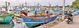 COVID sinks the hopes of northern fisherfolk