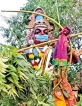 Vaccines coming; but rituals also continue; in Jaffna even Asuran wears mask