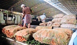 Vegetable prices on the rise again