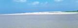 Estuarine fisher folk appeal for jetty