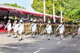 An ornamental police force