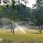 IMAG3881-Viharamahadevi-Park-Pic-Indika-handuwala