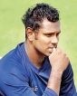 Mathews favourite to lead T20 side in Shanaka's absence