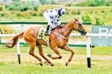 Local jockeys star as Alcazaba regain momentum and Jayaratnes record hat-trick