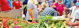 Little price controls, little options for public hit in the stomach