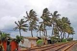 Southwest monsoon  forecast to make a storm