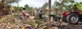 Homegrown fertiliser output rises