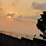 Induruwa: Evening watch: Pic by Reka Tharangani Fonseka