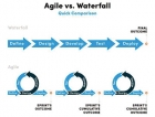 """""""Agile ways of working"""" for Fast Moving Consumer Goods Industry; Success or Failure?"""