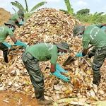 jaffna-troops-launch-organic-fertilizer-production-013