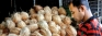 Coconut producers dismayed by plans to import coconut oil