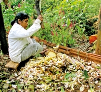 Preparing for the Maha season
