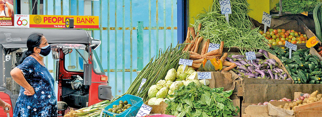 Homemakers ask where's veggie deliveries; Dambulla farmers desperate